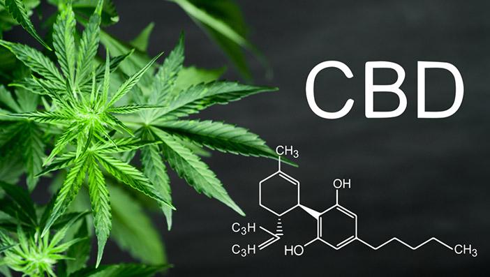 CBDとは?効果・THCとの違い・安全性を解説!
